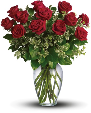Always on My Mind - Long Stemmed Red Roses