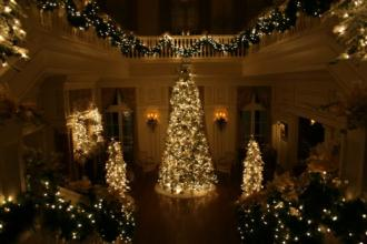 Estate Main Hall Tree