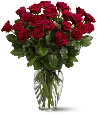 Two Dozen Red Roses