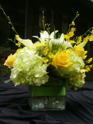 Square Vase with Yellow Orchids and Lime Hydrangea