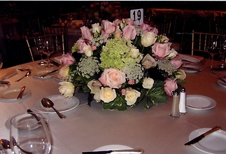 Dow wedding Pink Roses