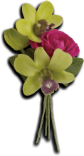 Orchid Celebration Boutonniere