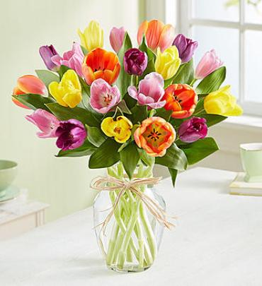 1-800-FLOWERS® Timeless Tulips®