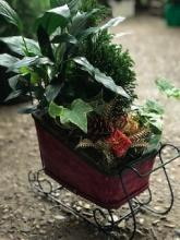 Christmas Sleigh Planter