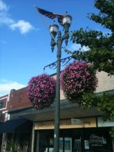 Hanging Baskets Downtown Lake Geneva