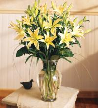 Lilies Arranged in a Vase for Sympathy